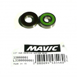 Bearing Kit for Rear Hubs 2013+